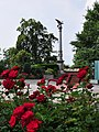 Rapperswil - Freiheitssäule IMG 6947.JPG
