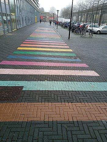 Regenboogpad voor lhbti en alle nationaliteiten in de Bijlmer, bij Station Kraaiennest, tegenover een kunstgalerij - Amsterdam.jpg