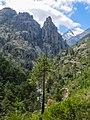 Restonica Gorge (34832618073).jpg