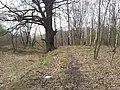Reta, Mikołów, Poland - panoramio (6).jpg