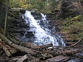 Ricketts Glen State Park F.L. Ricketts Falls 3.jpg