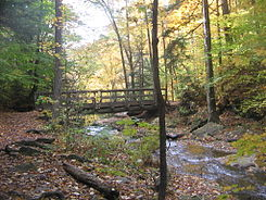 A hiking trail crosses a creek on a horizontal wooden footbridge with handrails. Below the bridge the creek drops out of sight and there is an opening in the trees behind the bridge. It is autumn and leaves of yellow, orange and some green are visible on the trees, rocks and trail.