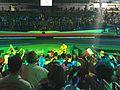 Rio 2016 - Fencing men's épée (FE008) (28561465353).jpg