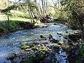 River Meden - geograph.org.uk - 752592.jpg
