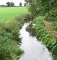 River Sence near Congerstone - geograph.org.uk - 925036.jpg