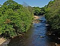 River Swale, near Richmond - geograph.org.uk - 1389568.jpg
