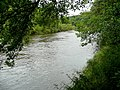 River Wye at the Counties Meet - geograph.org.uk - 1441618.jpg