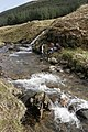 River fieldwork in Garrachra Glen - geograph.org.uk - 338477.jpg