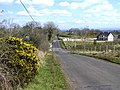 Road at Coose Quarter - geograph.org.uk - 767311.jpg