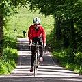 Road cycling (3599951331).jpg
