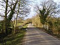 Road to Bucklers Hard from St Leonards, Beaulieu Estate - geograph.org.uk - 346848.jpg