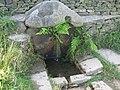 Robin Hood's Well - geograph.org.uk - 553378.jpg
