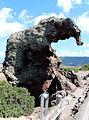 Roccia dell'elefante (multeddu), 02.JPG