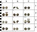 Roman coin hoard (FindID 607141-473991).jpg