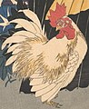 Rooster art detail, from- 歌川広重画 朝顔に鶏と傘-Rooster, Umbrella, and Morning Glories MET DP120477 (cropped).jpg
