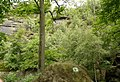 Rotkehlchenstiege - Elbsandsteingebirge - panoramio (5).jpg
