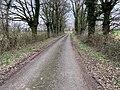 Route Petits Poissons St Jean Veyle 3.jpg