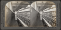 Roving frame. Silk industry (spun silk), South Manchester, Conn., U.S.A, by Keystone View Company 2.png