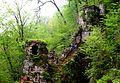 Rudkhan Castle2.jpg