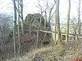 Ruine Hertenstein1.JPEG