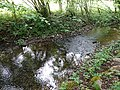 Ruisseau du Marais de l'Ale @ Seynod (50885705801).jpg