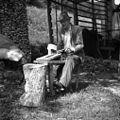 """Rzivən stou"""" za kaliče obdelovat (za berače - košare). Zakriž 1954.jpg"""