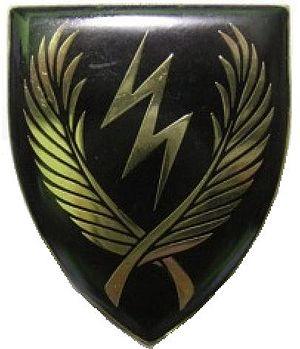 11 SAI - 11 SAI emblem