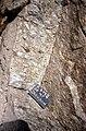 SE Mt Jackson megacrystic granite.jpg