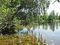 Salako sen., Lithuania - panoramio (59).jpg