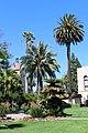 Santa Clara, CA USA - Santa Clara University - panoramio (20).jpg