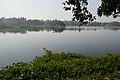 Santragachi Lake - Howrah 2013-01-25 3608.JPG