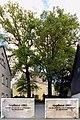 Schuleichen 1883 an der Kirche in Rammenau.jpg