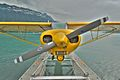 Seaplanes 010 (3688394812).jpg