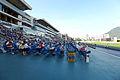 Sha Tin Racecourse Public Platform 2014.jpg