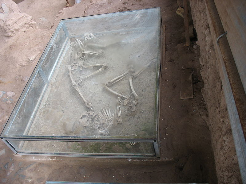 پرونده:Shadiyakh excavation skeleton0.jpg