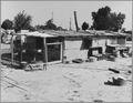 Shafter, Kern County, California. A view of the Shafter camp provided by Kern County since 1936 for . . . - NARA - 521678.tif