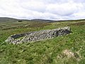 Sheepfold - geograph.org.uk - 444984.jpg