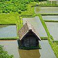 Shirakawa go , 白川郷 - panoramio (7).jpg