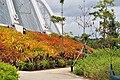 Singapore - panoramio (188).jpg
