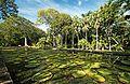 Sir Seewoosagur Ramgoolam Botanical Garden (23455974092).jpg