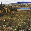 Sliding hill - panoramio.jpg