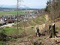 Smlednik panorama - panoramio.jpg