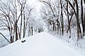 Snow road by the river (Unsplash).jpg
