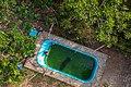 Soltura de peixe-boi, Amapá (48997645486).jpg