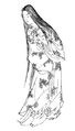 Sotoorihime.png