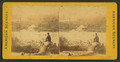 South bank, near the bridge, Brandywine Creek, from Robert N. Dennis collection of stereoscopic views.png