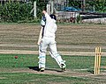 Southwater CC v. Chichester Priory Park CC at Southwater, West Sussex, England 056.jpg