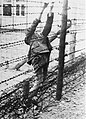Soviet prisoner of war committed suicide on electrified fence in Mauthausen.jpg