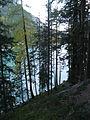 Spöl-Ausgleichsbecken bei Margun Grimmels.jpg