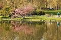 Spring in London (7116597579).jpg